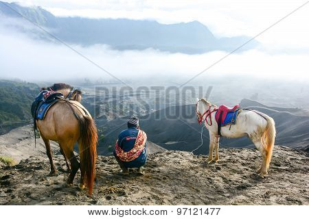 Man With Horses For Tourist Rent At Mount Bromo