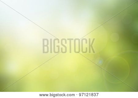 Abstract Green Nature Blurred Background