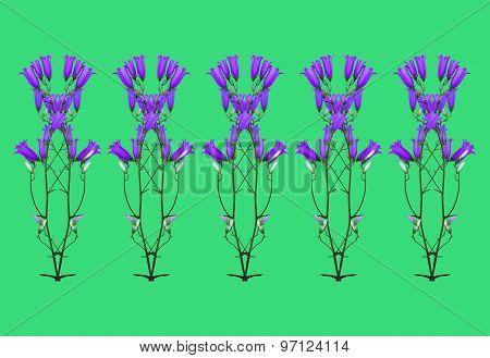 Flowers Bluebells
