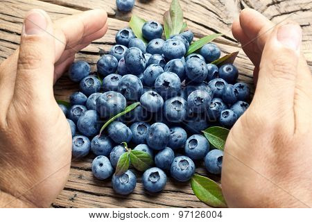 Blueberries in the man's hands. Old wooden table on the background.