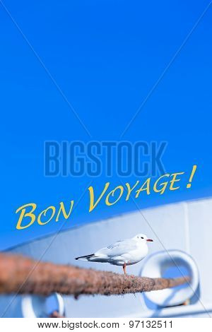 Seagull and Harbor Travel Scene - Bon Voyage