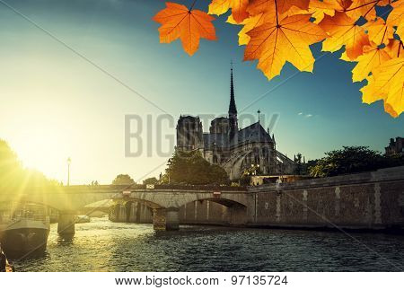 Notre Dame de Paris and autumn leaves, France