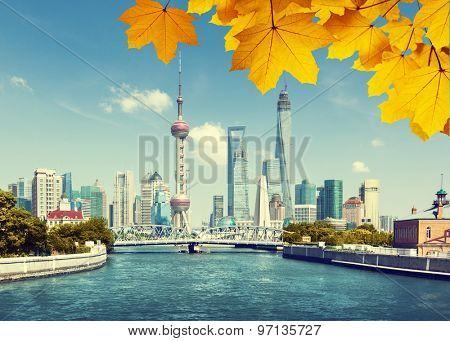 Shanghai skylineand autumn leaves, China
