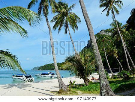 Ang Thong beach (Thailand)