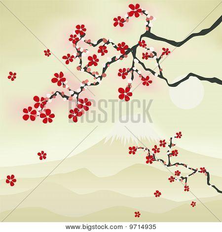 Flor de cerezo japonés
