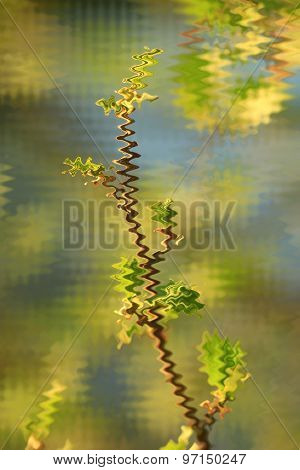 Abstract Blurred Young Sprouts Of A Willow
