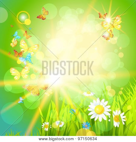 Positive summer background with flowers and insects. Place for text.