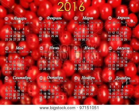 Calendar For 2016 On The Red Cherry's Background