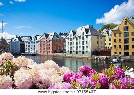 Flowers Of Alesund