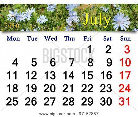 Calendar For July 2016 With Flowers Of Cichorium