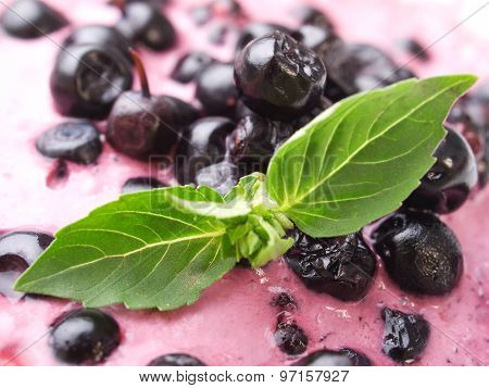 Bluberry Yogurt