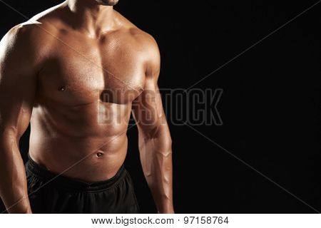 Bare chested male body builder, crop