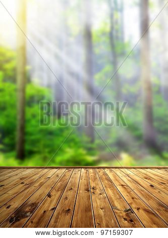Bokeh in the forest with wooden board