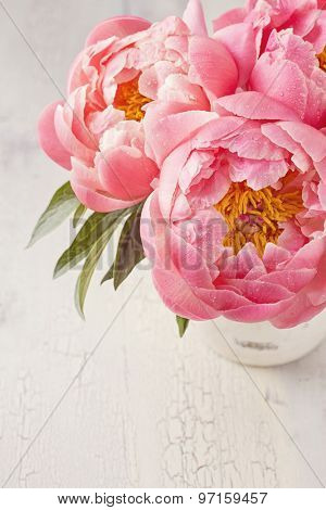 Peony flowers in a white vase