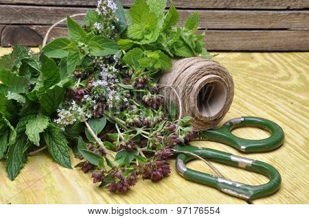herbs lemon balm, thyme, mint  and accessories