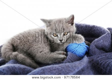 Cute gray kitten with skein of thread on warm plaid isolated on white