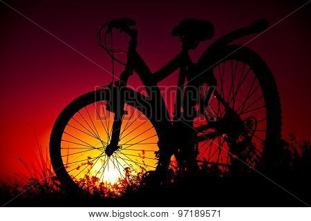 Bicycle Against A Decline