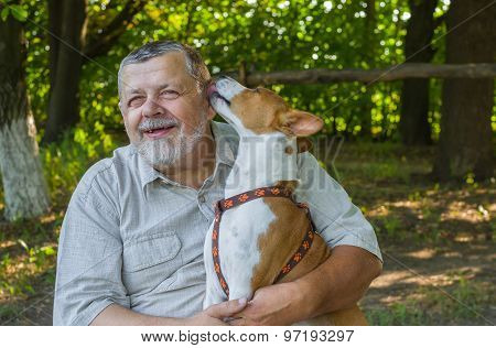 Basenji licks the master showing how it loves him