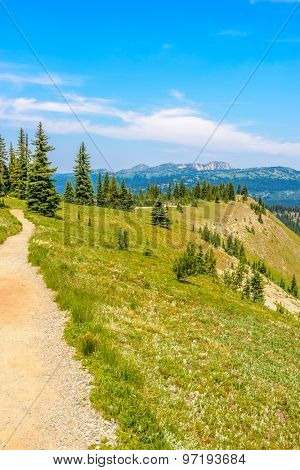 Beautiful Mountain Trail. Blackwall Peak Trail at Manning Park in British Columbia. Canada.