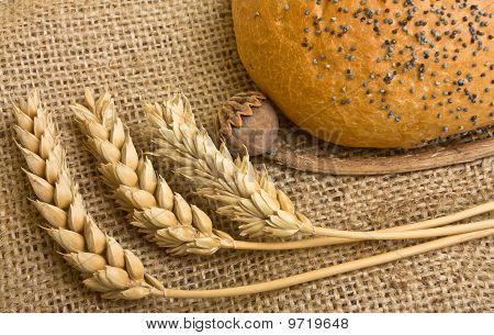 Cosy Bread