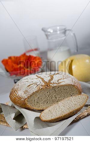 Bread In Human Life