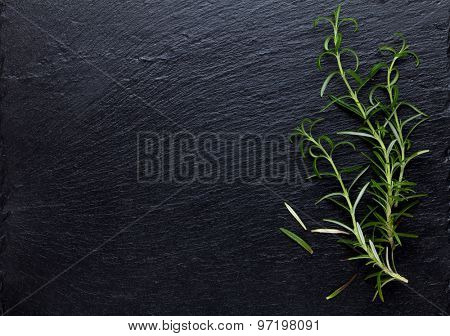 Rosemary herb on stone table. Top view with copy space