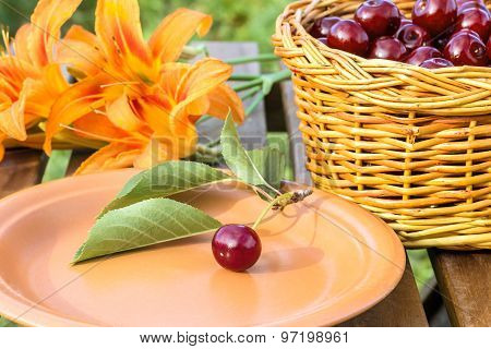 Cherry On A Twig On A Plate