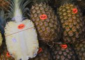 Pile Of Ripe Pineapple
