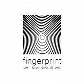 pic of fingerprint  - Fingerprint  - JPG