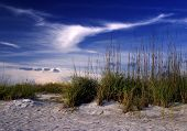 foto of trippy  - Cloud formation above dunes on the west coast of Florida - JPG