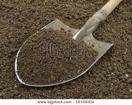 Spade With Soil