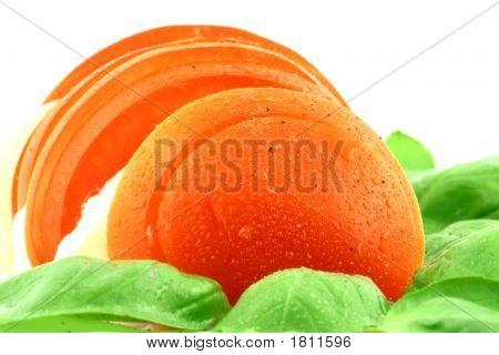 Tasty Tomato