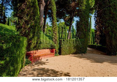 walkway and a bench in the mediterranian park with bright greenery