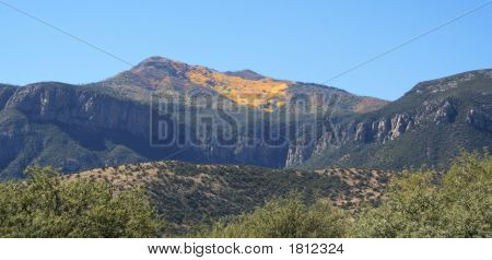 A Huachuca Mountain Autumn