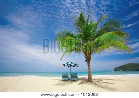 Palm Lounge