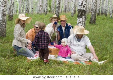Big Family Picnic