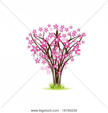 Colorful pink cherry tree. Jpeg version