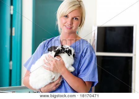 A portrait of a female vet holding a rabbit