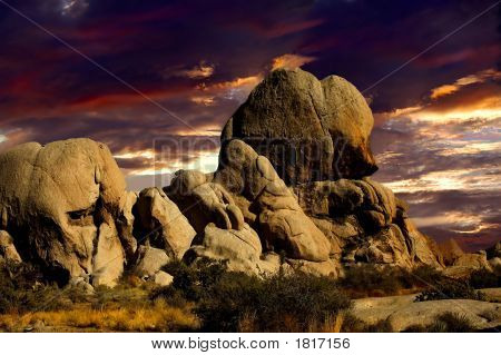 Sunset In Joshua Tree Nat Park