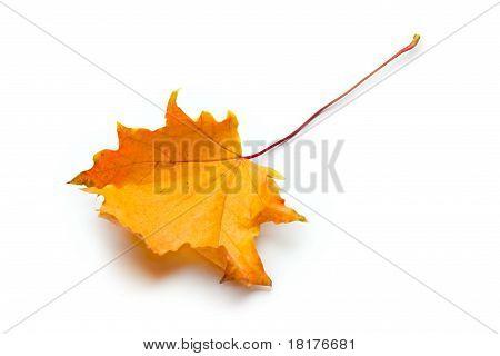 Herbst Urlaub