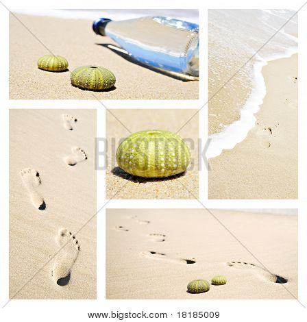 Collage Of Beach Scenes With Footprints And Sea Urchin Shells