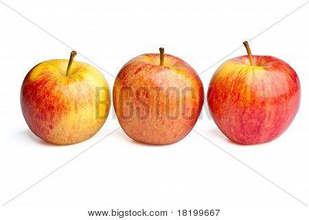 Three Royal Gala Apples