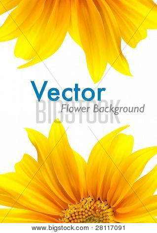 Summer flower vector background