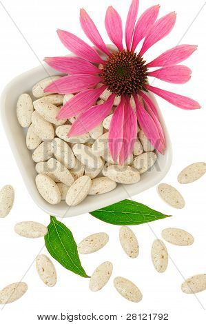 Echinacea purpurea extract pills alternative medicine concept