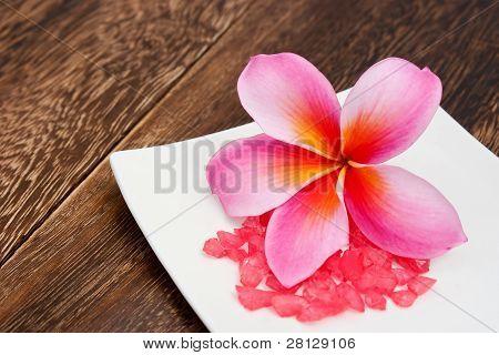 Plumeria tropical con aromaterapia rojo sal para el concepto de Wellness y Spa