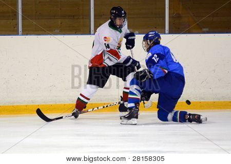 KAPOSVAR, HUNGARY - DECEMBER 17: Unidentified players in action at a friendly ice hockey match with Hungarian (white) and Italian (blue) Under 16 National Team, December 17, 2011 in Kaposvar, Hungary.