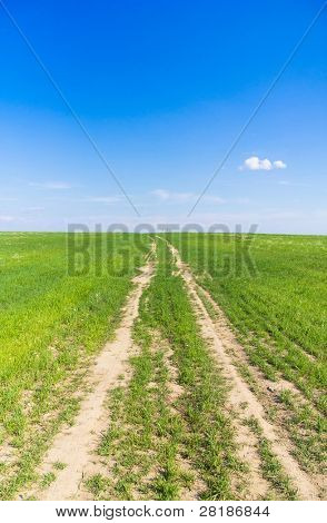 Road In a Field Path