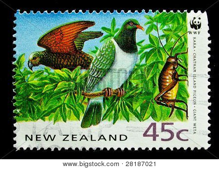 NEW ZEALAND - CIRCA 1991: A stamp printed in New Zealand, shows a giant weta,  chatham island pigeon, kaka, circa 1991