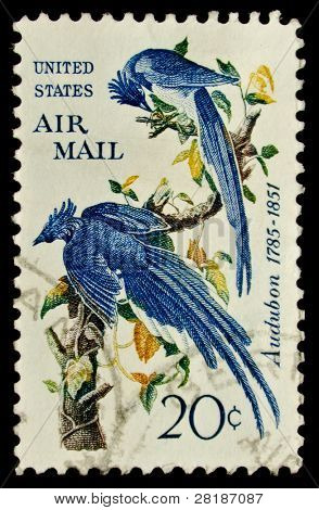 USA - CIRCA 1963: A stamp printed by USA shows a pair of blue birds from the Audubon Society, circa 1963.