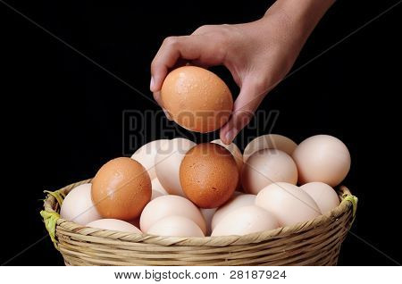 All eggs in one basket, risk management concept